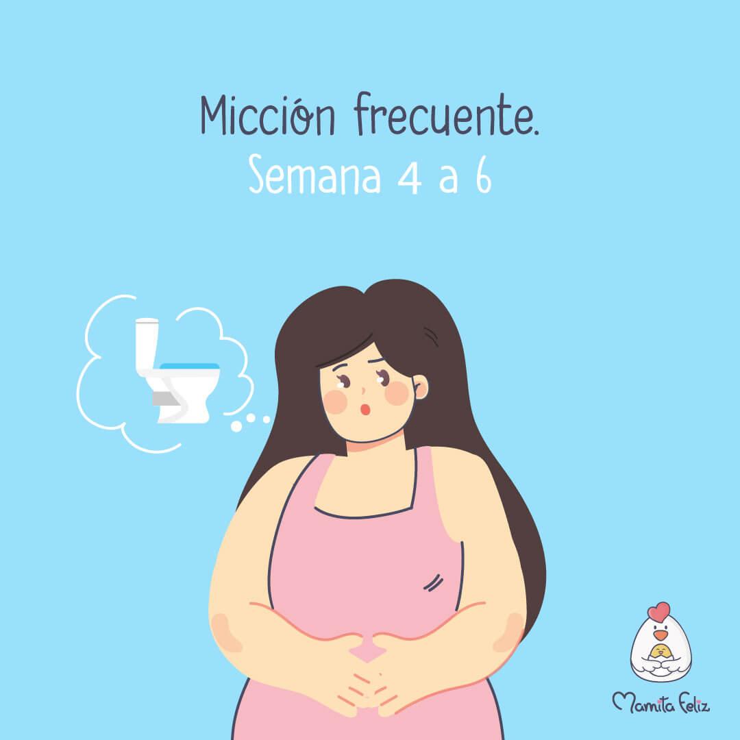 miccion frecuente en el embarazo